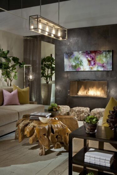Dream House - Fireplace Inserts
