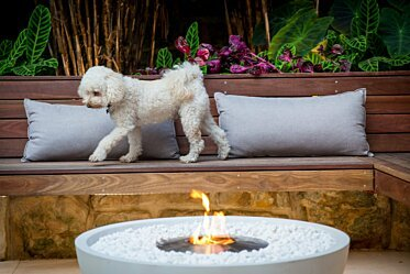 Stone Lotus Landscapes - Outdoor Fireplaces