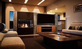 Nozomi Views Linear Fires Fireplace Insert Idea